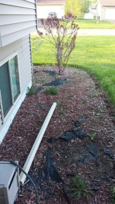 Front Yard Landscaping Before | Fairhome Road