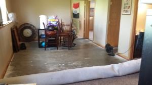 Basement Flood - Living Room | Fairhome Road